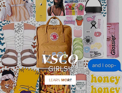 Who are the VSCO Girls?